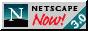 Get netscape now 3.0 (1990s icon encouraging downloads)