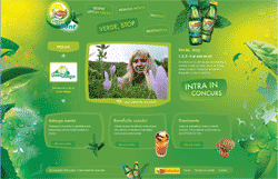 Lipton Green Mint Website home page